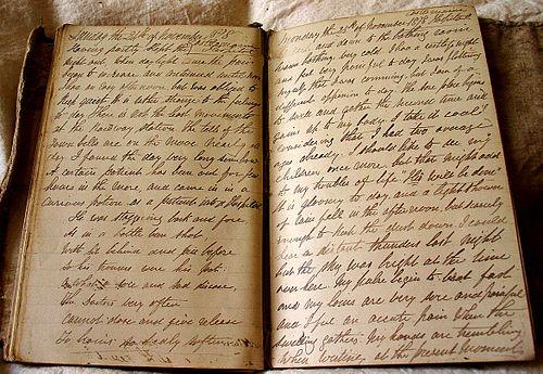 500px-Diary1878