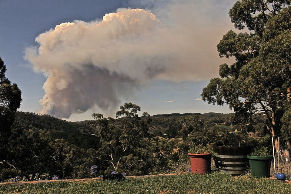 Bushfire - Version 2