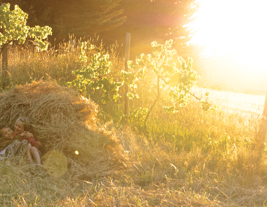 Raking and building haystack, children playing in the hay